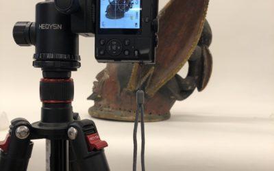 Mehr Pixel, mehr Wissen: Einblicke in die fotografische Objektdokumentation
